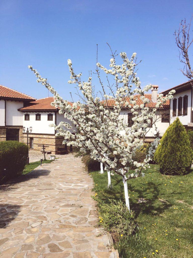 Chateau Medovo Burgas