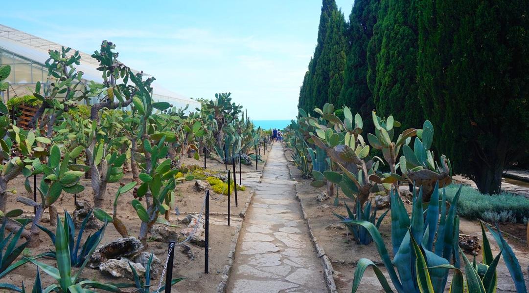 Balchik Botanical Garden